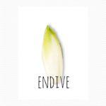 endive